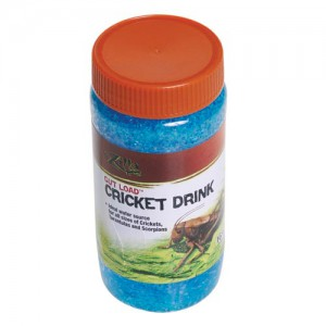 Gut Load Cricket Drink - 16 oz