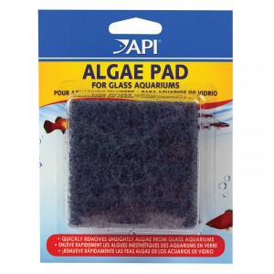 Hand Held Algae Pad - Glass