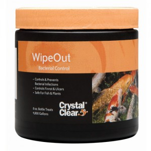 Wipeout Bacterial Control - 8 oz