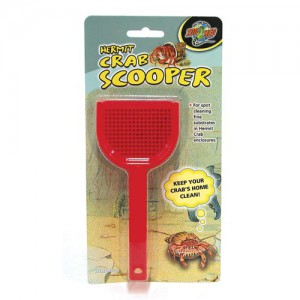 Hermit Crab Scooper - Assorted