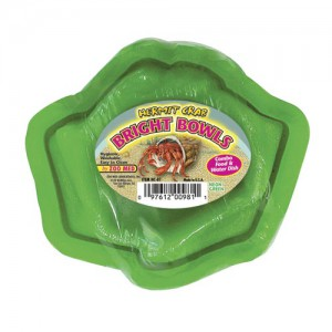 Hermit Crab Bowl - Green