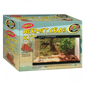 Starter Hermit Crab Kit