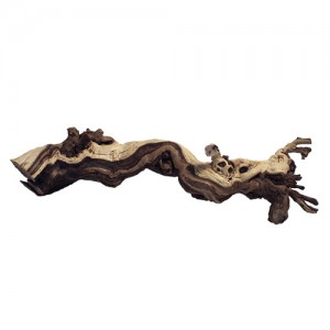 Premium Sand Blasted Grapevine - Medium