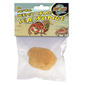 All Natural Hermit Crab Sea Sponge