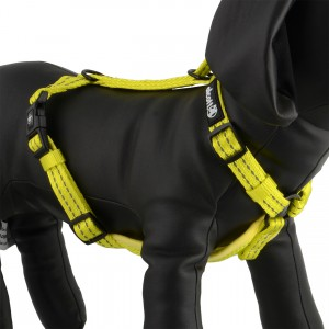 Essentials Adventure Visibility Harness - Neon Yellow - Large