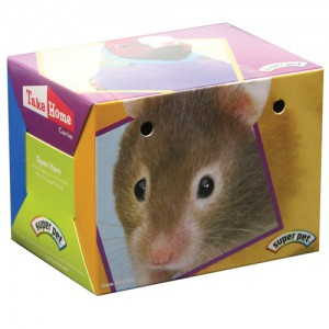 Super Pet Take-Home Box for Small Animals - Small
