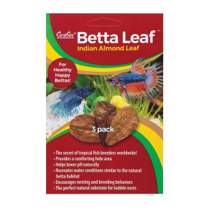 Betta Leaf Indian Almond Leaf - 3 pk