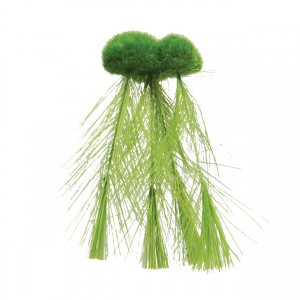 Floating Moss with Feather Roots - Small