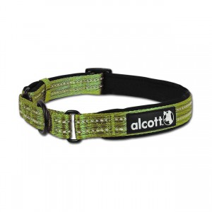 Adventure Martingale Collar - Green - Large