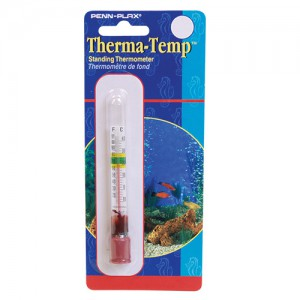 Standing Thermometer