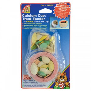 Calcium Cup / Treat Feeder with Pumpkin Seeds