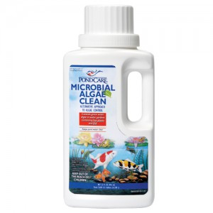 Microbial Algae Clean - 32 fl oz