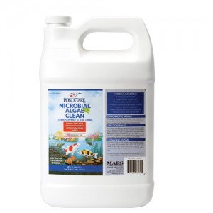 Microbial Algae Clean - 64 fl oz