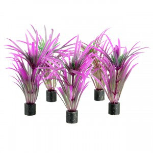 "Mini Plant - Purple Grass - 3"" - 5 pk"