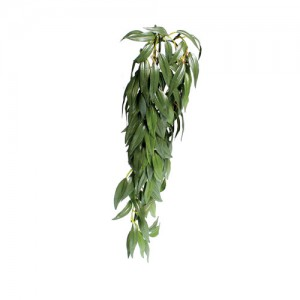 Hanging Silk Ruscus - Medium