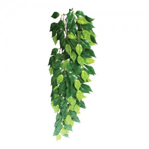Hanging Silk Ficus - Large