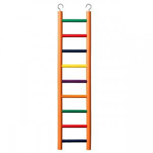 9-rung Wood Bird Ladder - Multi-color