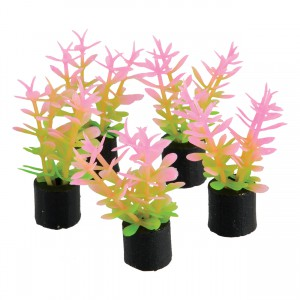 "Mini Plant - Pink and Green - 1.5"" - 5 pk"