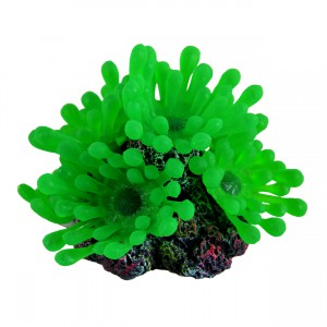Bubble Polyp - Small - Green