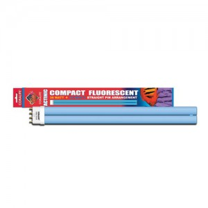 """Actinic Compact Fluorescent Lamp - Straight Pin - 36 W - 16"""""""