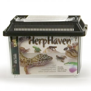 Rectangular HerpHaven - Mini