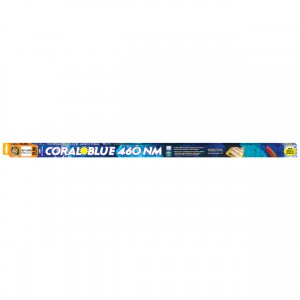 Coral Blue 460nm T5-HO Lamp - 54 W - 46""