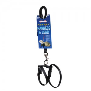 Harness & Lead Set - Black