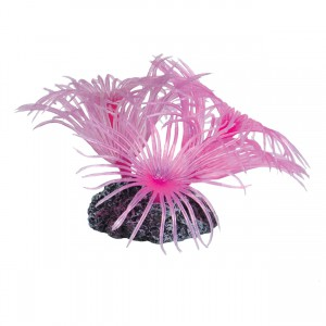 Feather Duster - Pink