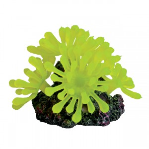 Bubble Polyp - Small - Yellow