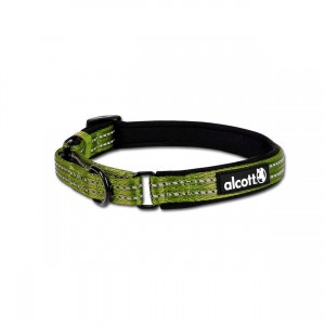 Adventure Martingale Collar - Green - Medium