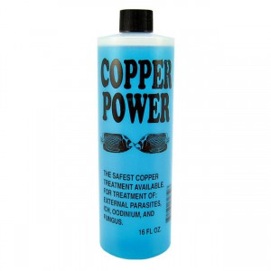 Copper Power Blue for Saltwater - 16 fl oz