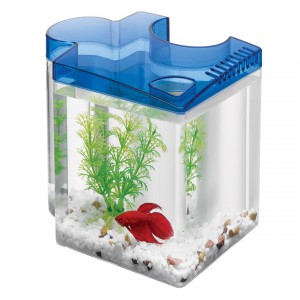Betta Puzzle Aquarium Kit - Blue