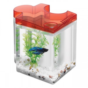 Betta Puzzle Aquarium Kit - Red