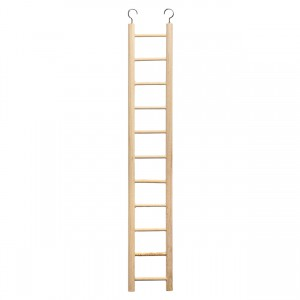 11-rung Bird Ladder