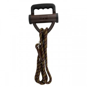 Power Leash - Brown
