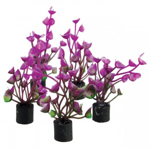 "Underwater Treasures Mini Plant Purple Ear - 2.25"" - 5 pk"