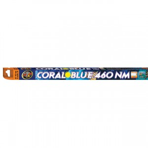 """Coral Blue 460nm T8 Actinic Lamps - 15 W - 18"""""""